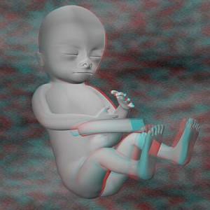 Плод на пятнадцатой неделе беременности 3D