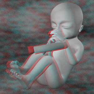 Плод на шестнадцатой неделе беременности 3D