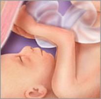 Плод на двадцать седьмой неделе беременности