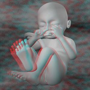 Плод на двадцать восьмой неделе беременности 3D