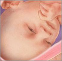 Плод на тридцать первой неделе беременности