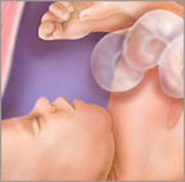 Плод на тридцать шестой неделе беременности