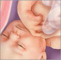 Плод на тридцать седьмой неделе беременности