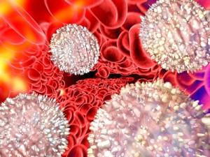 Повышенные лейкоциты